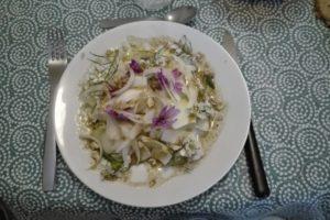 image entrée crokmidi du 30 mars salade endive