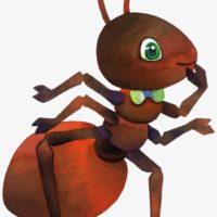 mercredi en famille fourmis