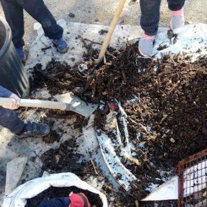 Jardinons ensemble-compost1